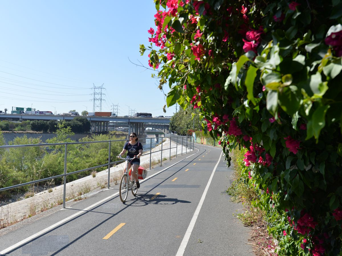 A bicycle path along the Los Angeles river. There are people riding bicycles. On one side of the path are tall bushes with red flowers. On the other side of the path is a fence with wild grass behind it.