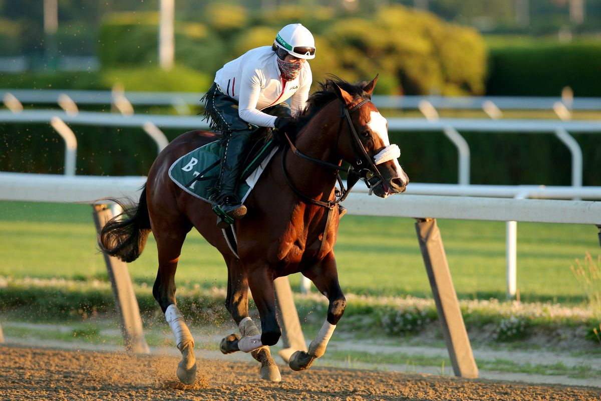 Belmont Stakes favorite Tiz the Law runs on the main track during a morning workout at Belmont Park.
