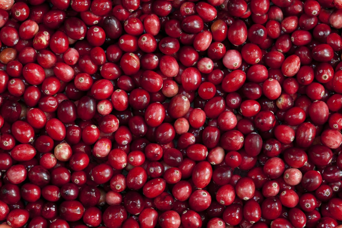 ocean spray wants to sell you cranberry supplements now vox