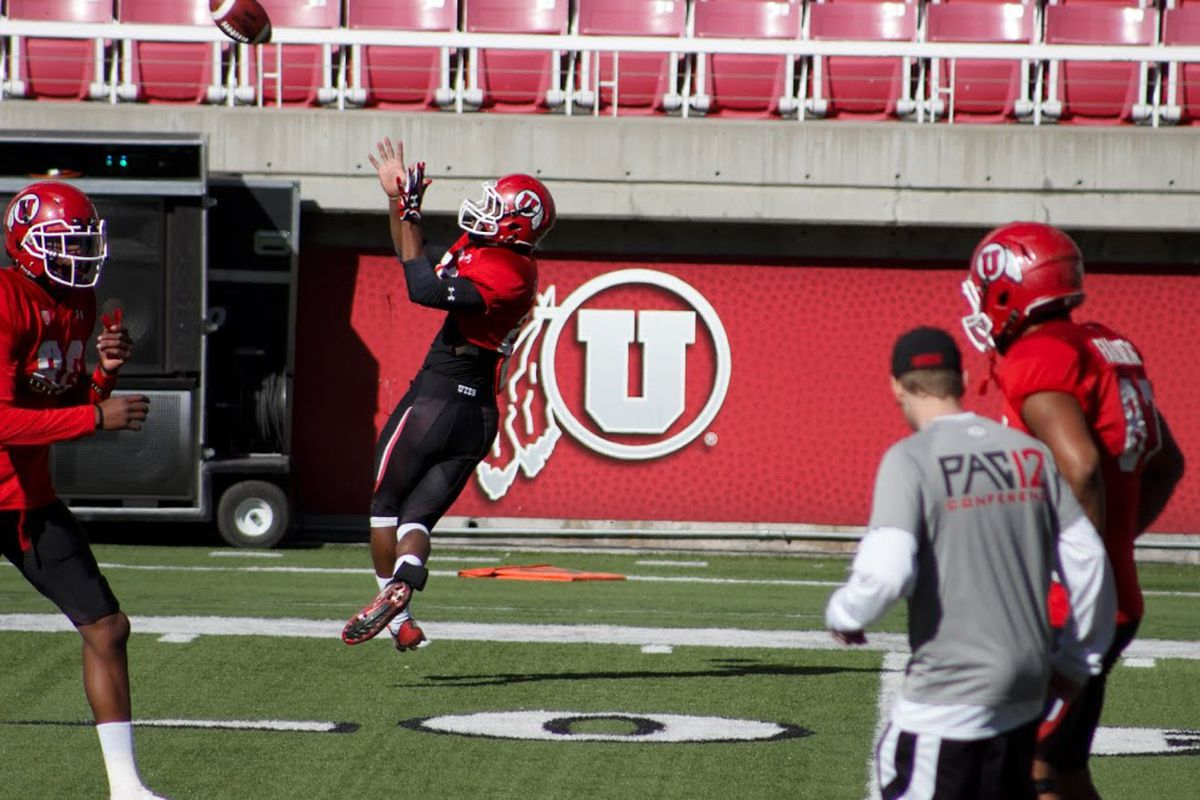 Wide receiver catching a pass 3_28_15