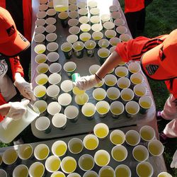 Volunteers fill cups at the athlete's village prior to the start of the 116th running of the Boston Marathon, in Hopkinton, Mass., Monday, April 16, 2012. (AP Photo/Stew Milne)