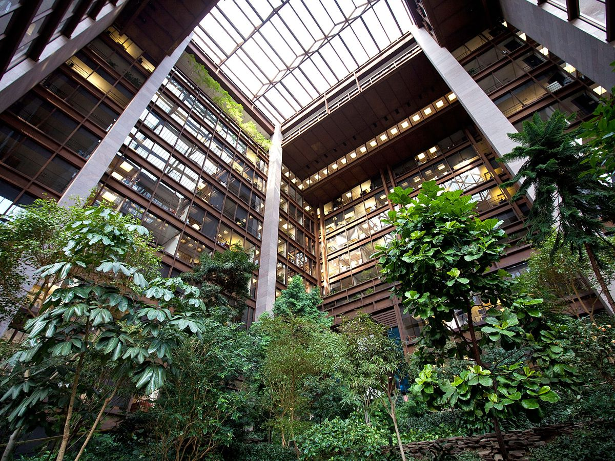 The interior of the Ford Foundation Atrium in New York City. There are multiple tall trees and plants. There is a large skylight.