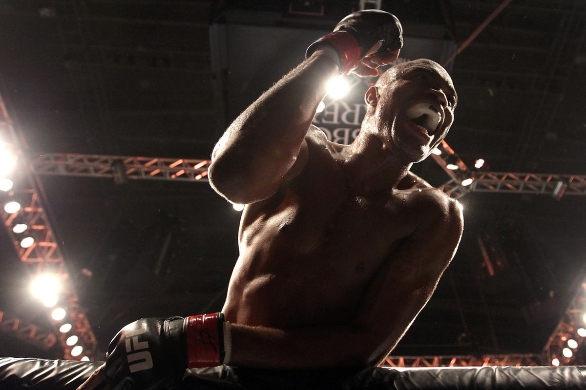 Anderson Silva UFC 134