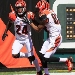 Cincinnati Bengals' Adam Jones (24) is congratulated by Marvin Jones (82) after returning a punt 81 yards for a touchdown in the first half of an NFL football game on Sunday, Sept. 16, 2012, in Cincinnati.