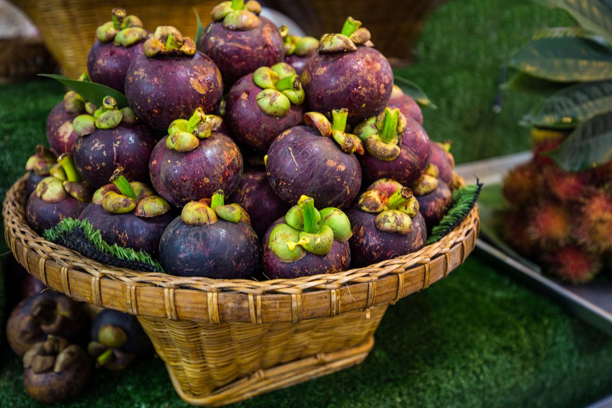 Purple mangosteens in a basket at Or Tor Kor Market in Bangkok.