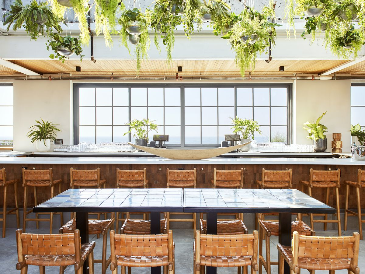 A line of wooden chairs faces a window with a view of the Atlantic Ocean in a brightly lit bar with hanging plants