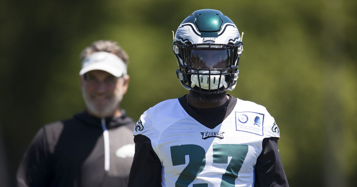 Closer look at the Eagles' safety situation heading into 2019