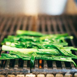Grilling green onion tops.