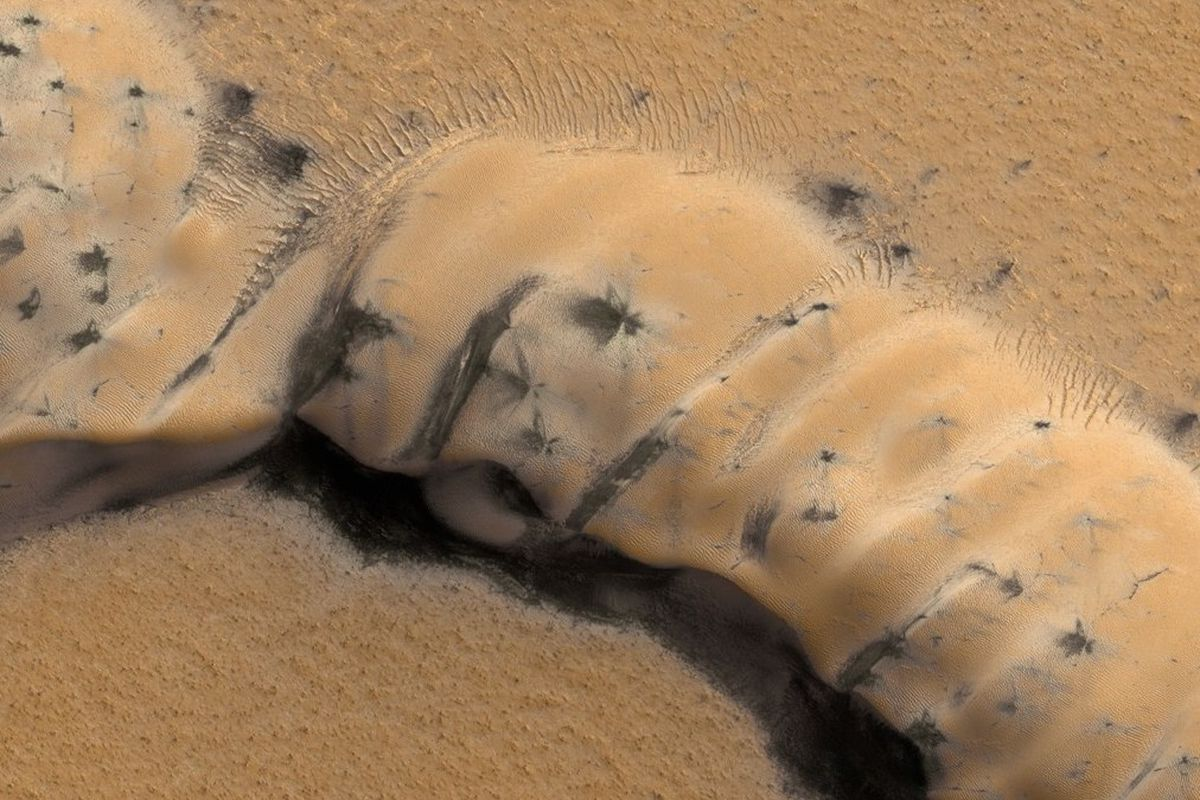 Spiders Mars