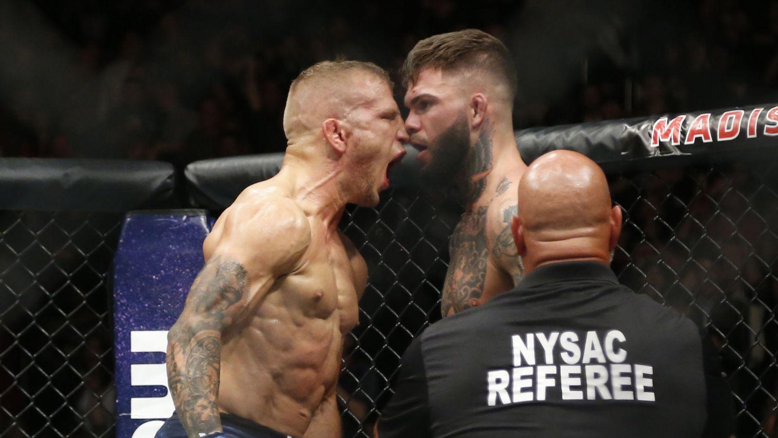 McGregor Hair Transplant?   Sherdog Forums   UFC, MMA