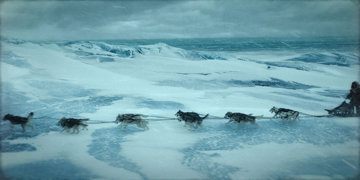 A team of dogs pull a sled.
