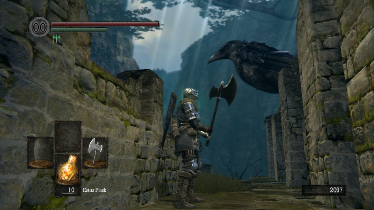 My Dark Souls character, her trusty weapon, and her big crow friend