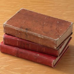 The Joseph Smith Papers feature the minutes from the Council of Fifty meetings held in Nauvoo, Illinois, in the 1840s. The minutes were compiled in three small bound volumes by William Clayton, who was appointed clerk of the Council of Fifty at its first meeting in Nauvoo.