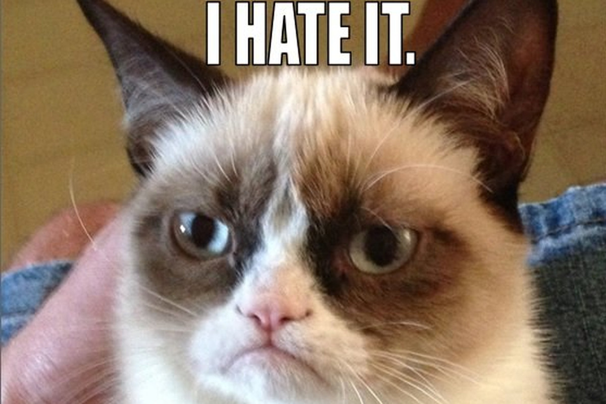 Grumpy cat gets movie deal will reportedly star in big family via puu thecheapjerseys Choice Image