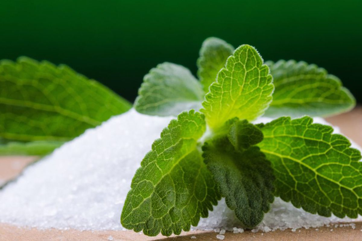 Eating Right: How sweet are stevia's benefits? - Chicago Sun-Times