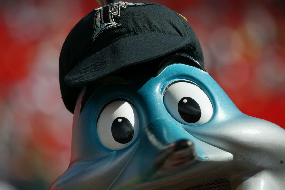 Billy the Marlin watches