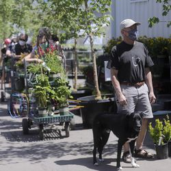 Ken Zina and his dog Dex wait check out at Glover Nursery in West Jordan on Tuesday, May 5, 2020.