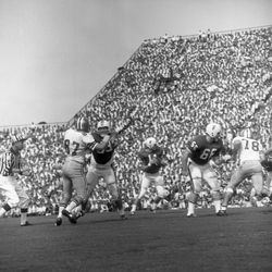 1966-UF QB #11 Steve Spurrier set to throw the football during game against FSU in Tallahassee.