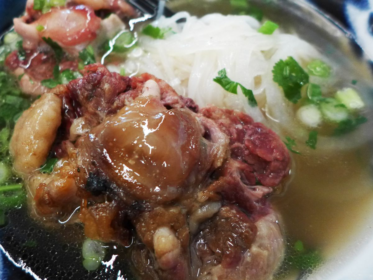A big old oxtail sits in the middle of a bowl of pho.