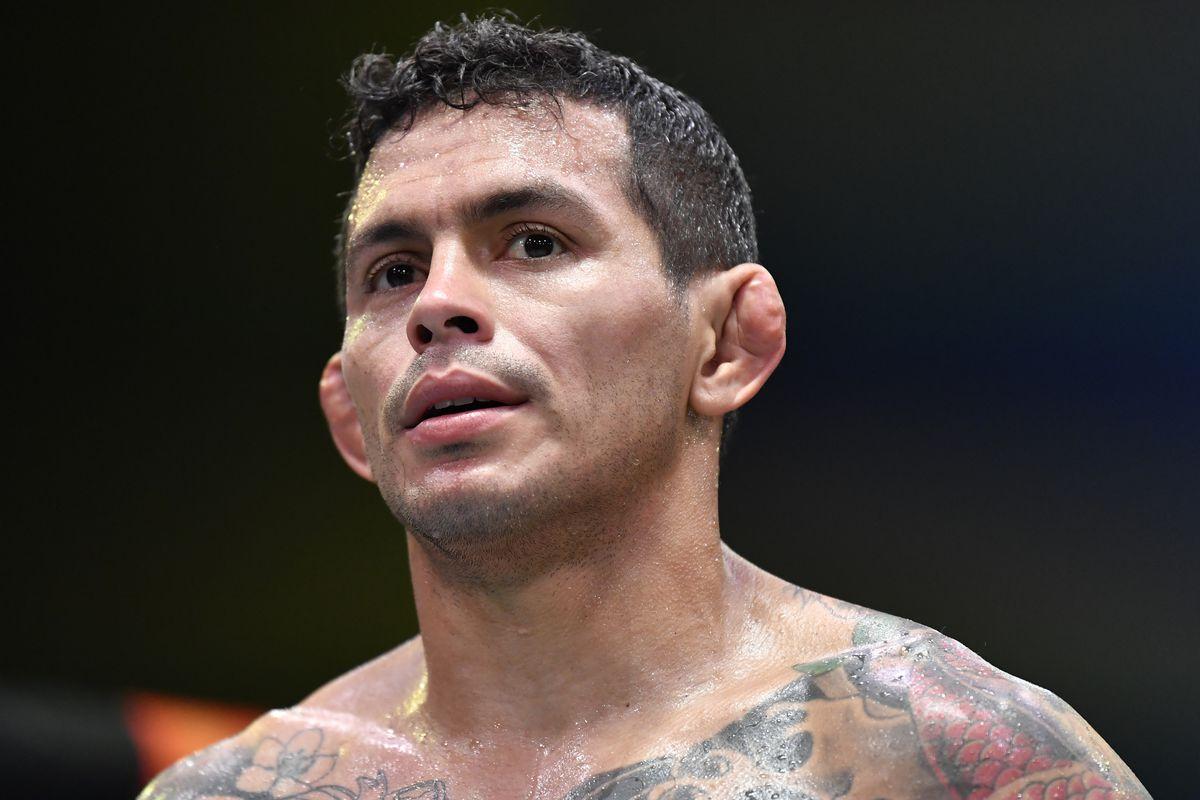 UFC Fight Night: Ferreira v Gillespie