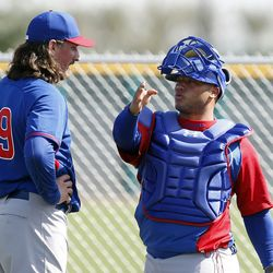 Write your own caption. What are Shark and Welington Castillo talking about?