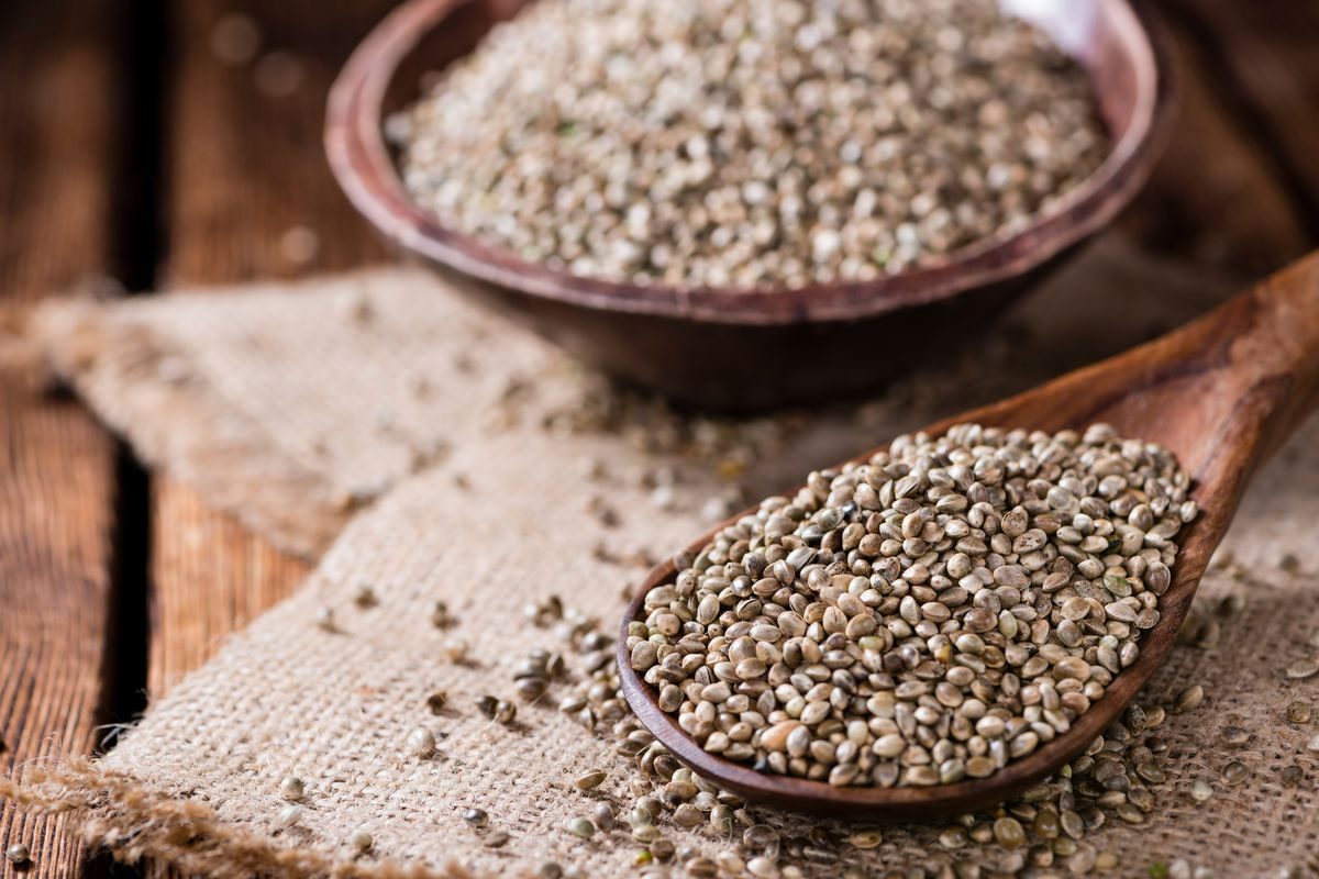 Hemp was among the first crops to be cultivated as a textile fiber, in things like cloth, rope and paper. Historically, it has been used as food, in religious rituals, and medicinally to treat ailments like wounds, toothaches and arthritis.