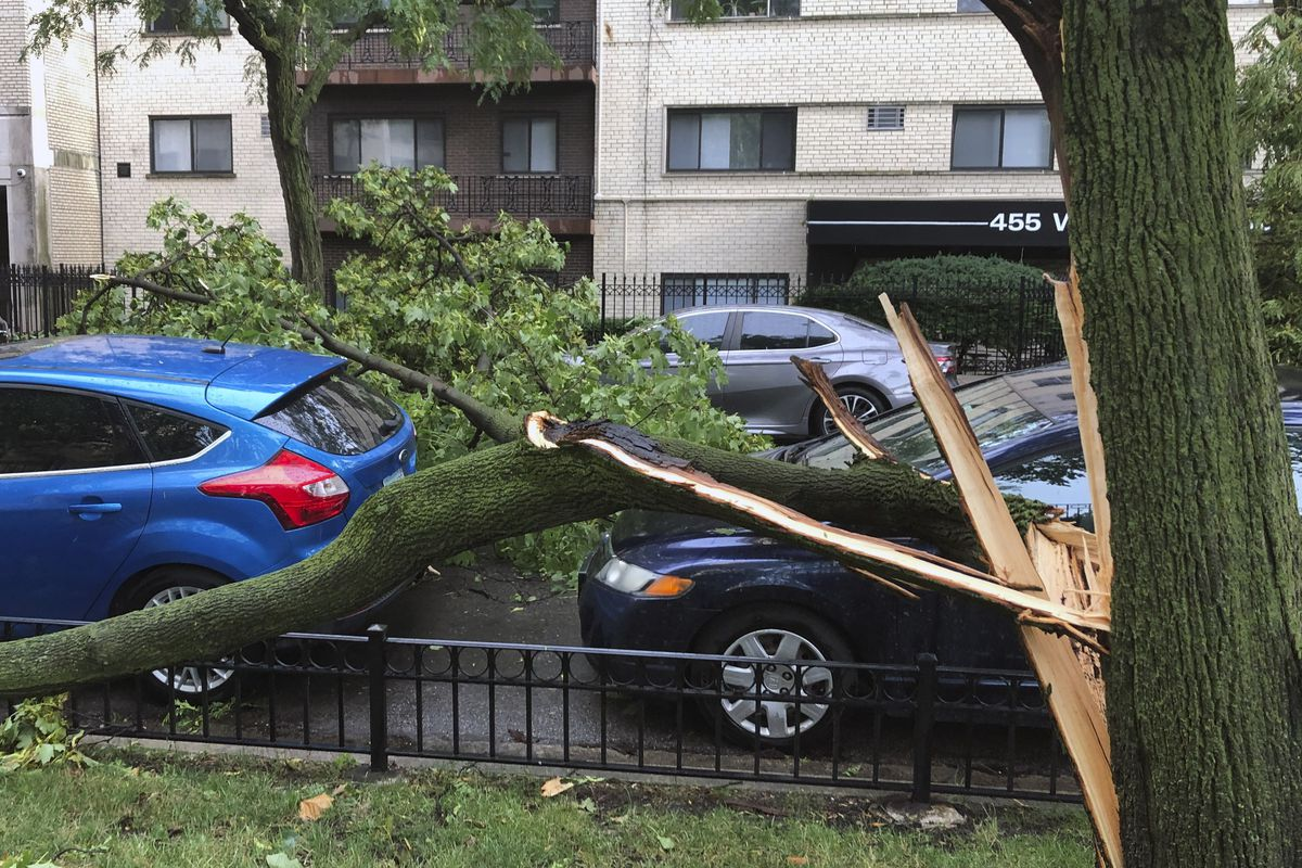 A downed tree blocks a road in the Lake View neighborhood after storms swept through the area Monday, Aug. 10, 2020.
