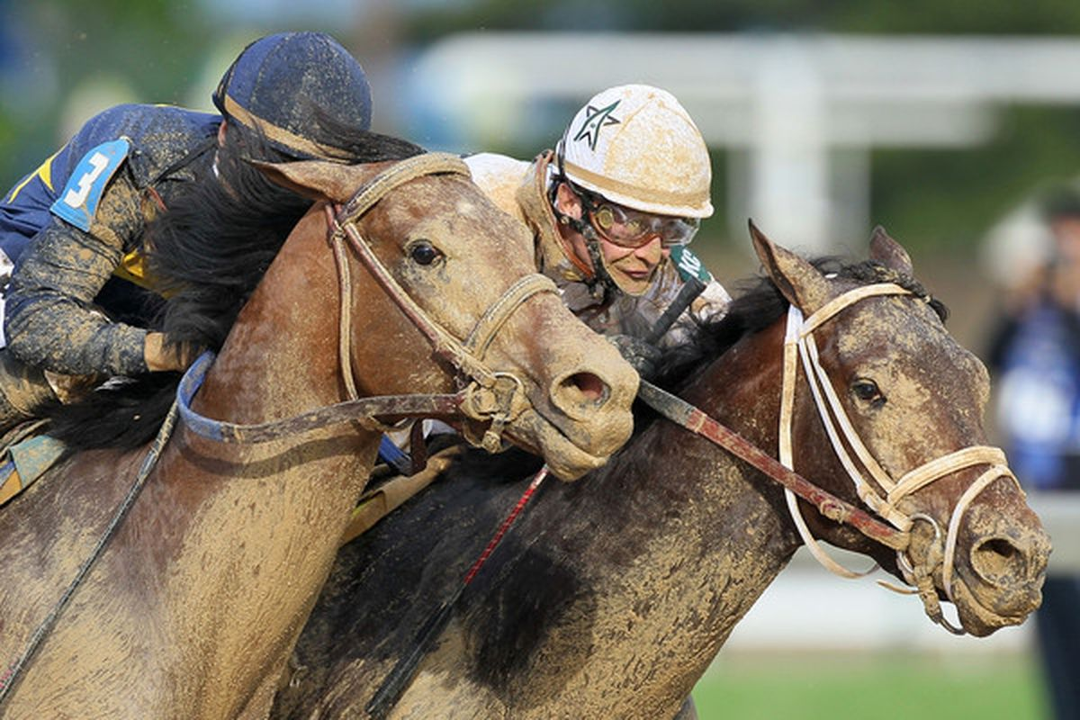 LOUISVILLE, KY - MAY 1st:  Calvin Borel rides Super Saver to the finish line for the win in the 136th running of the Kentucky Derby on May 1, 2010 in Louisville, Kentucky.  (Photo by Andy Lyons/Getty Images)