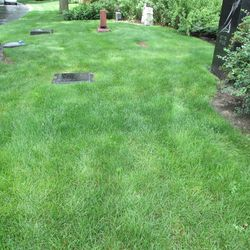 6/22/15: Another view -