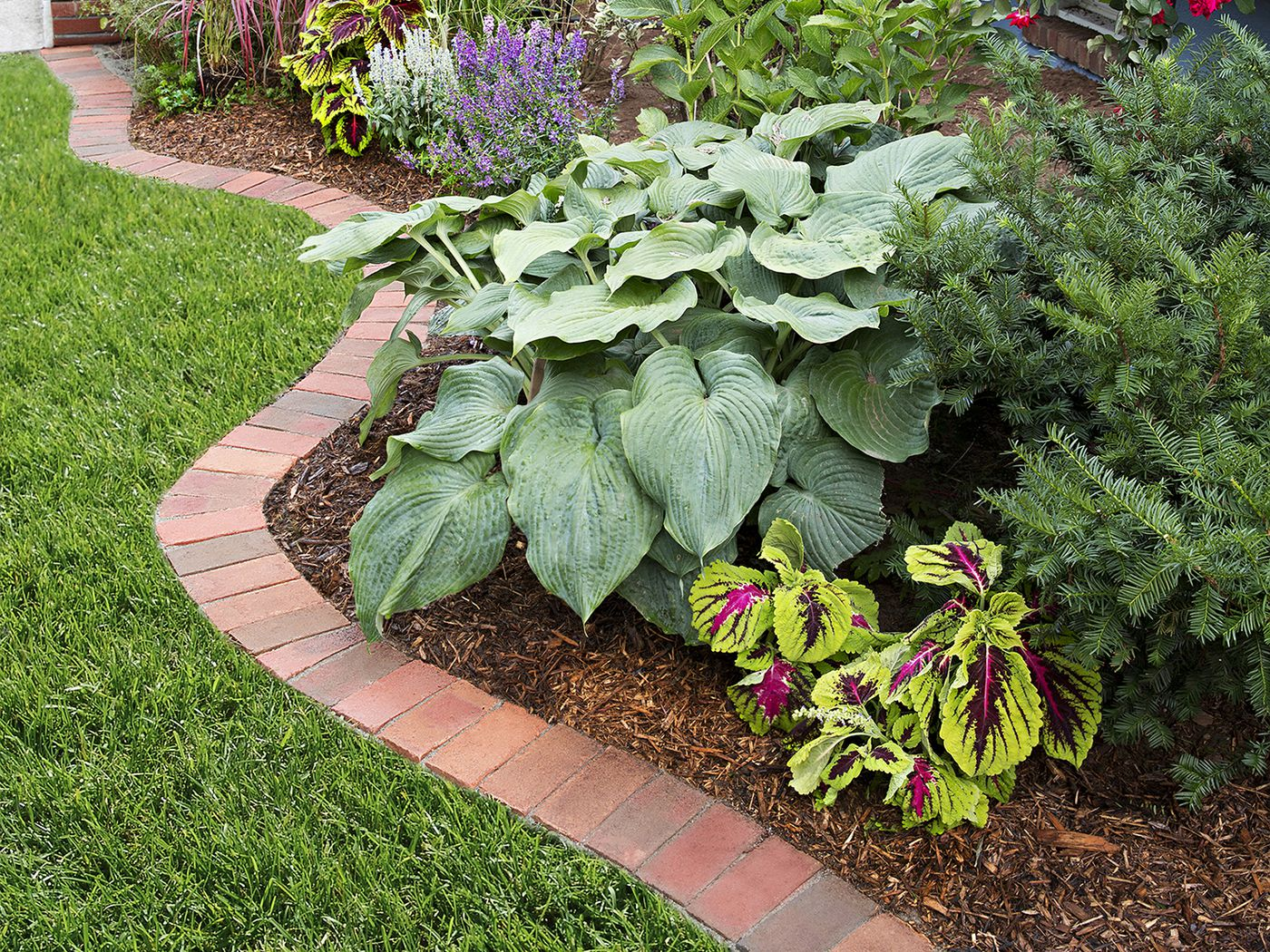 Picture of: Brick Edging Beautify Your Garden In 12 Steps This Old House