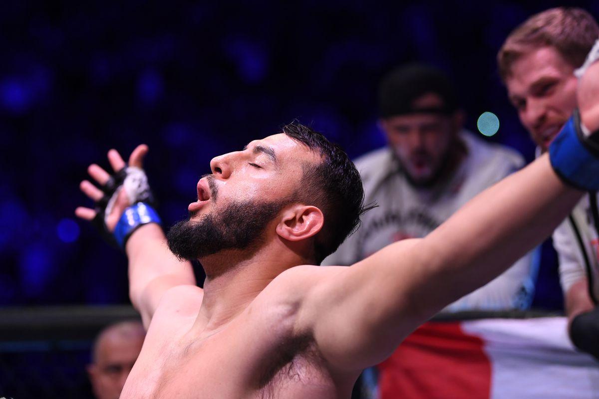 UFC 247: Jones v Reyes