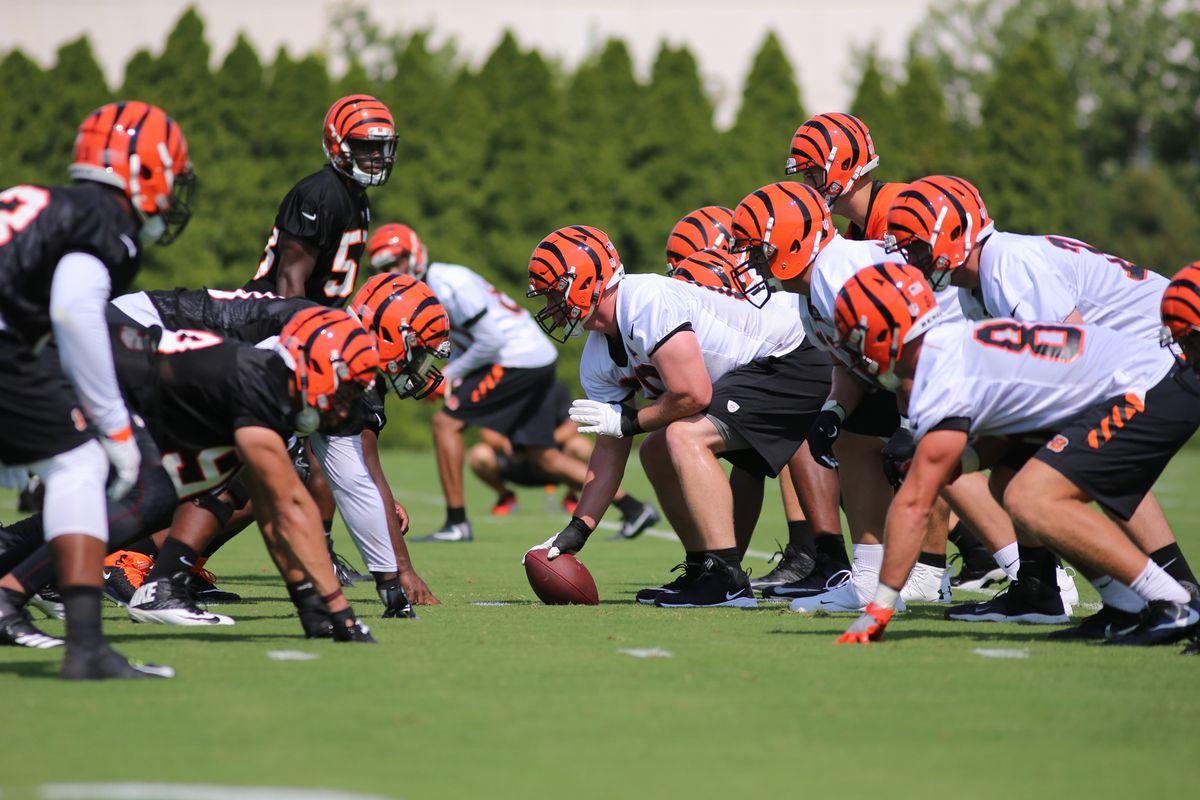 NFL: JUL 28 Bengals Training Camp