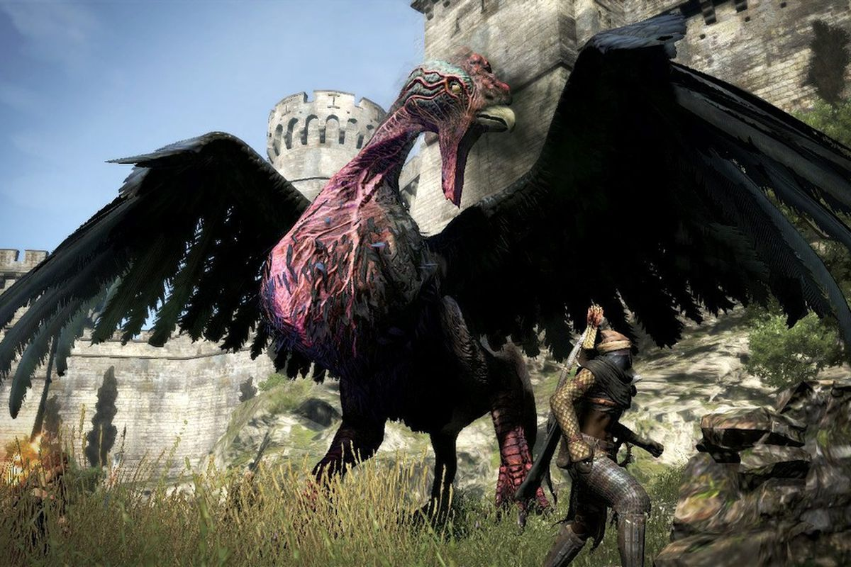 dragon's dogma hero