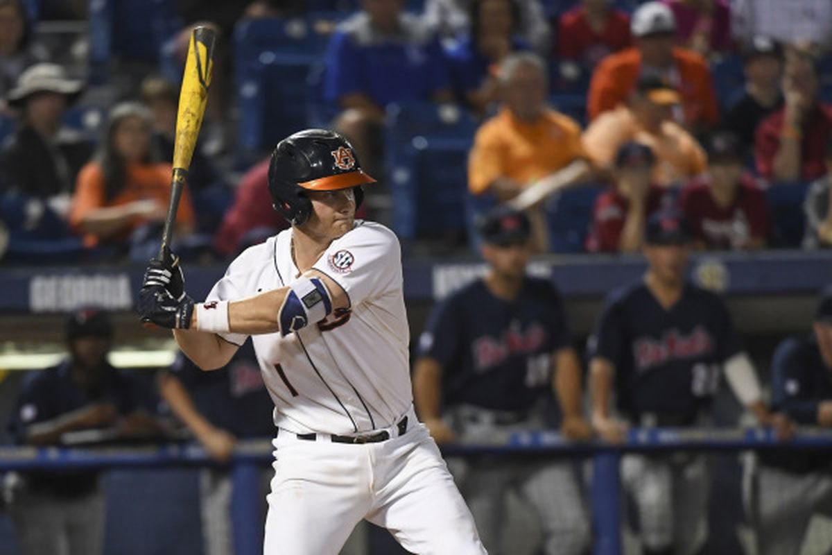 Blake Logan hits a solo HR to give the Tigers the lead.