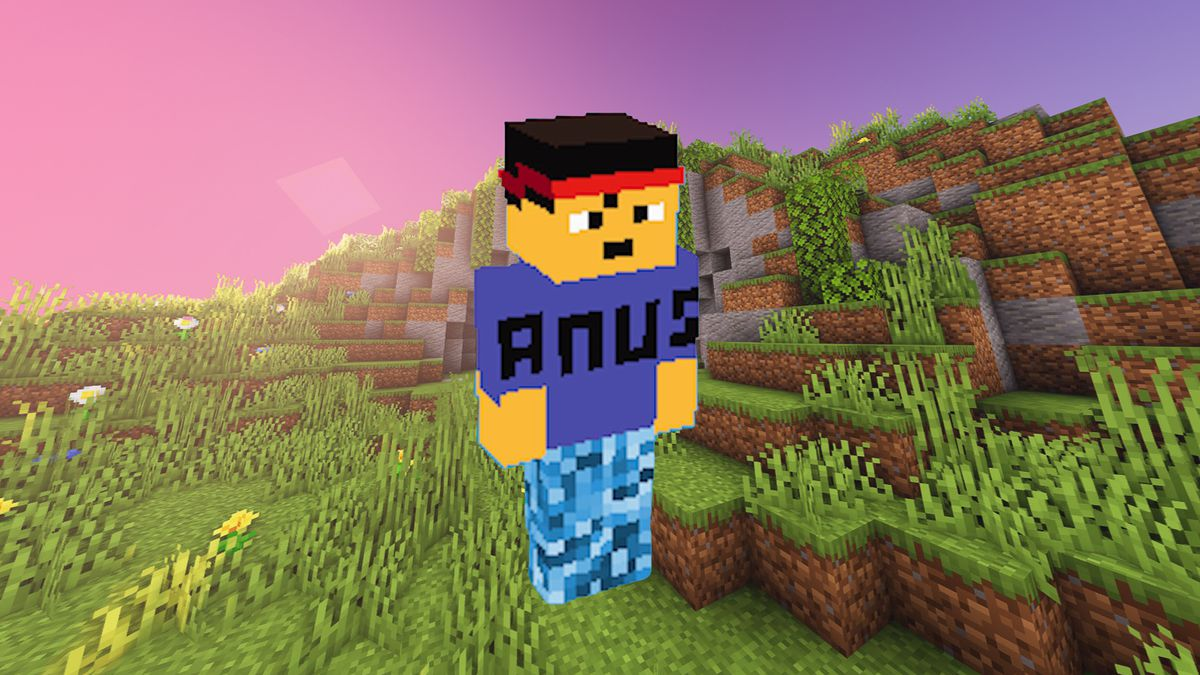 Minecraft character on a landscape background