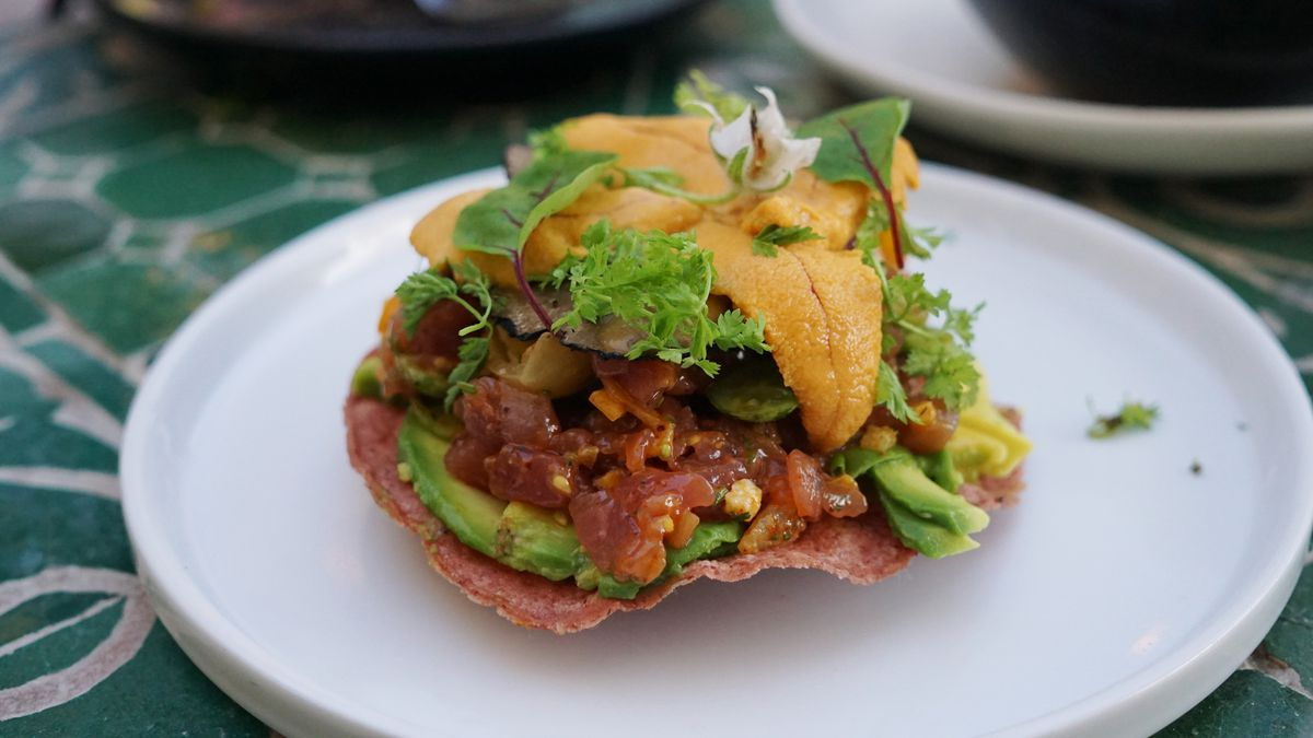 Local tuna tostada with uni and summer truffle at Mirame on a white plate.