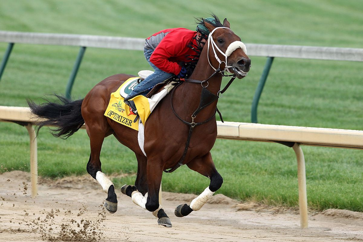 Optimizer looks for back-to-back victories over the Fair Grounds turf course on Saturday.
