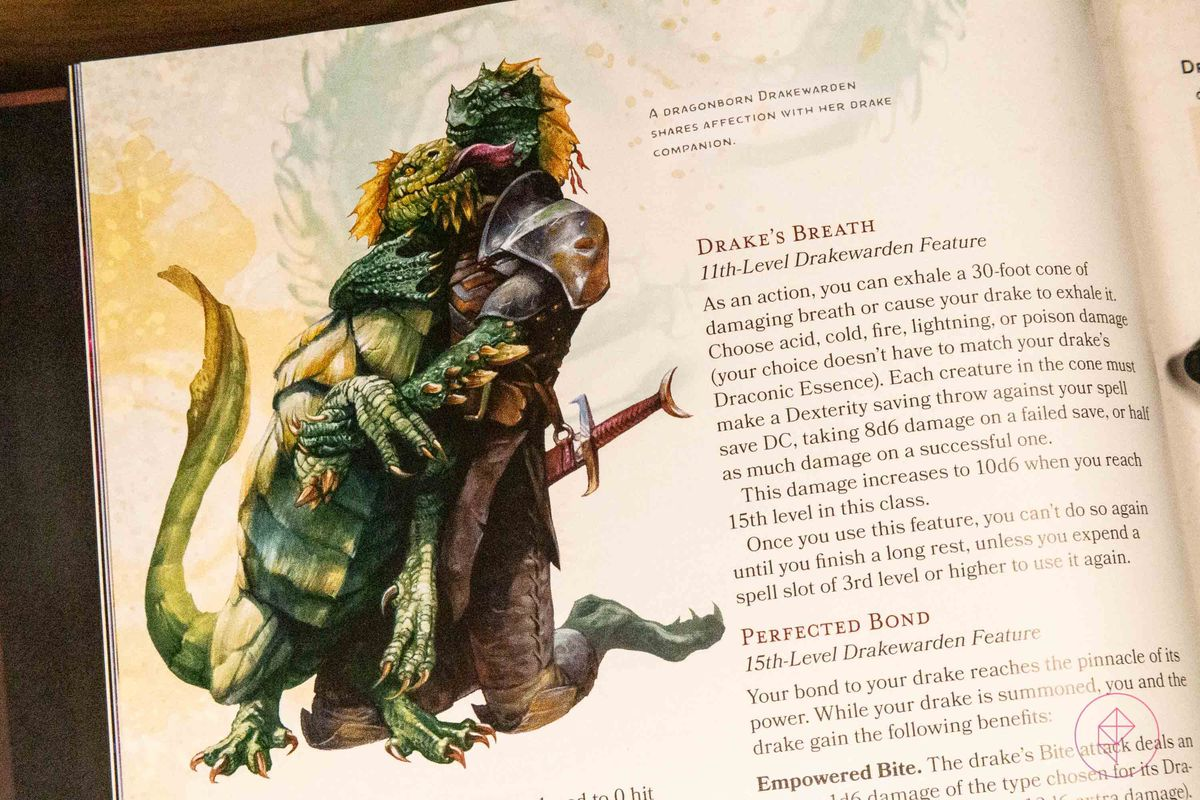 An image of a drakewarden subclass with its pet drake.