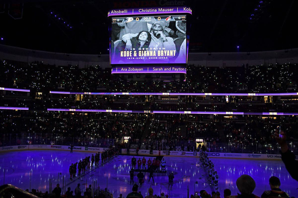 NHL: JAN 29 Coyotes at Ducks