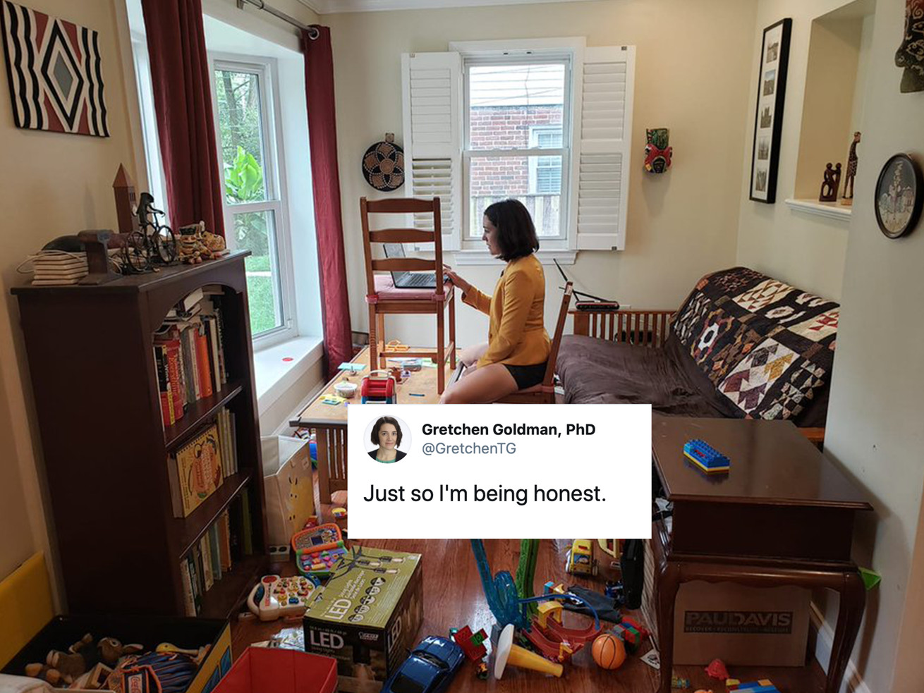 This Scientist Showed What Working From Home During The Pandemic REALLY Looks Like