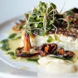 """Wild Striped Bass from S Prime by <a href=""""http://www.flickr.com/photos/bradleyhawks/8079981545/in/pool-eater"""">Amuse * Bouche</a>"""