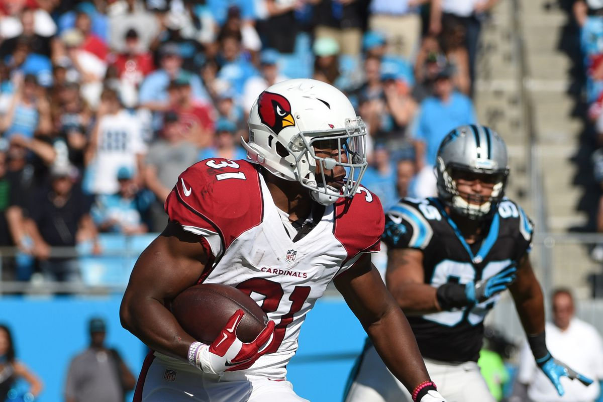 brand new 9e389 38c8c Cardinals vs Panthers: Five questions with Cat Scratch ...