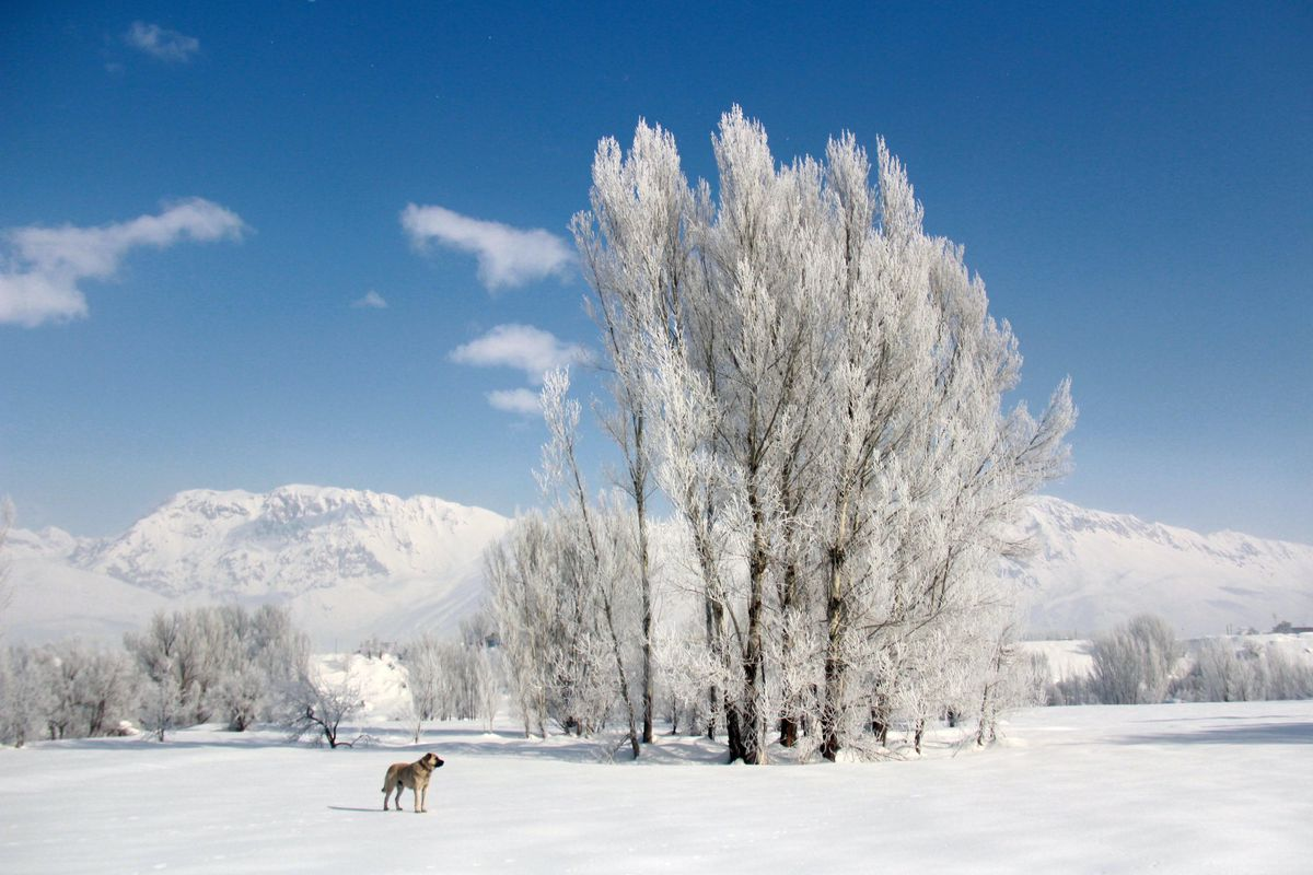 """<p zoompage-fontsize=""""15"""" style="""""""">Snow fall in Eastern Turkey"""