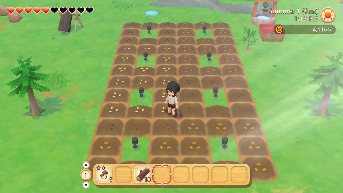 Un agriculteur se tient sur une petite parcelle de terre avec des graines dans le sol et des arroseurs dispersés