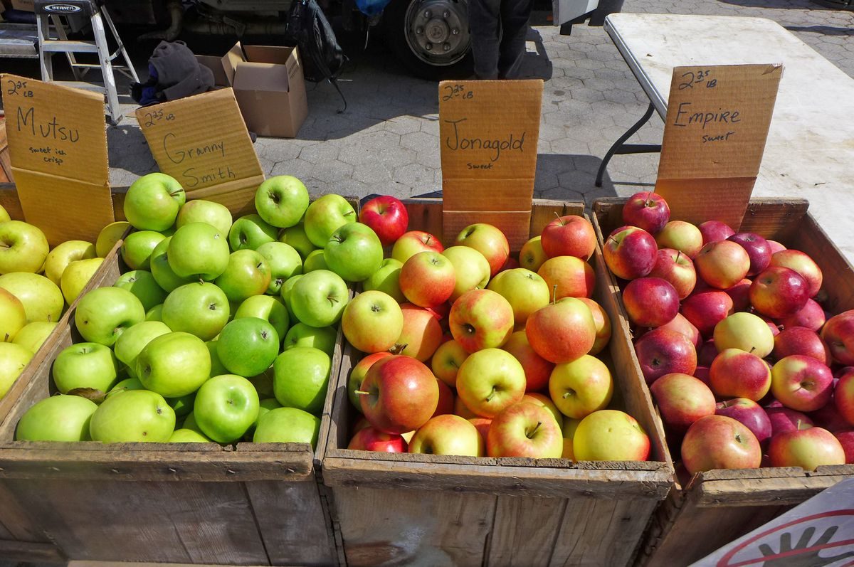Four wooden bins of apples in shades of red, yellow, green, or mottled.