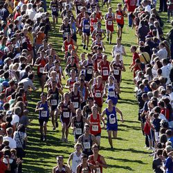 Runners pass through a gauntlet of fans during the 3A boys state cross country high school competition.