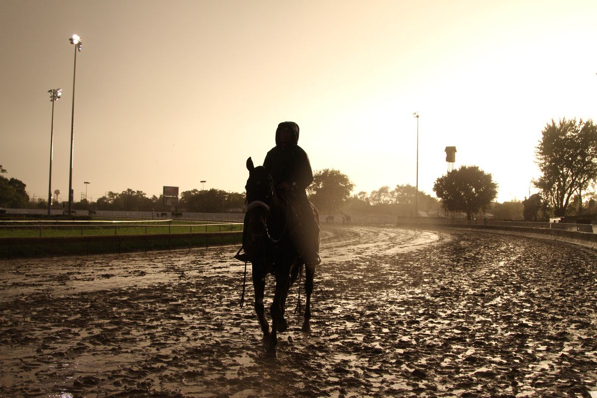A horse returns from finishing a race on a muddy track at Hawthorne Race Course in October 2017.