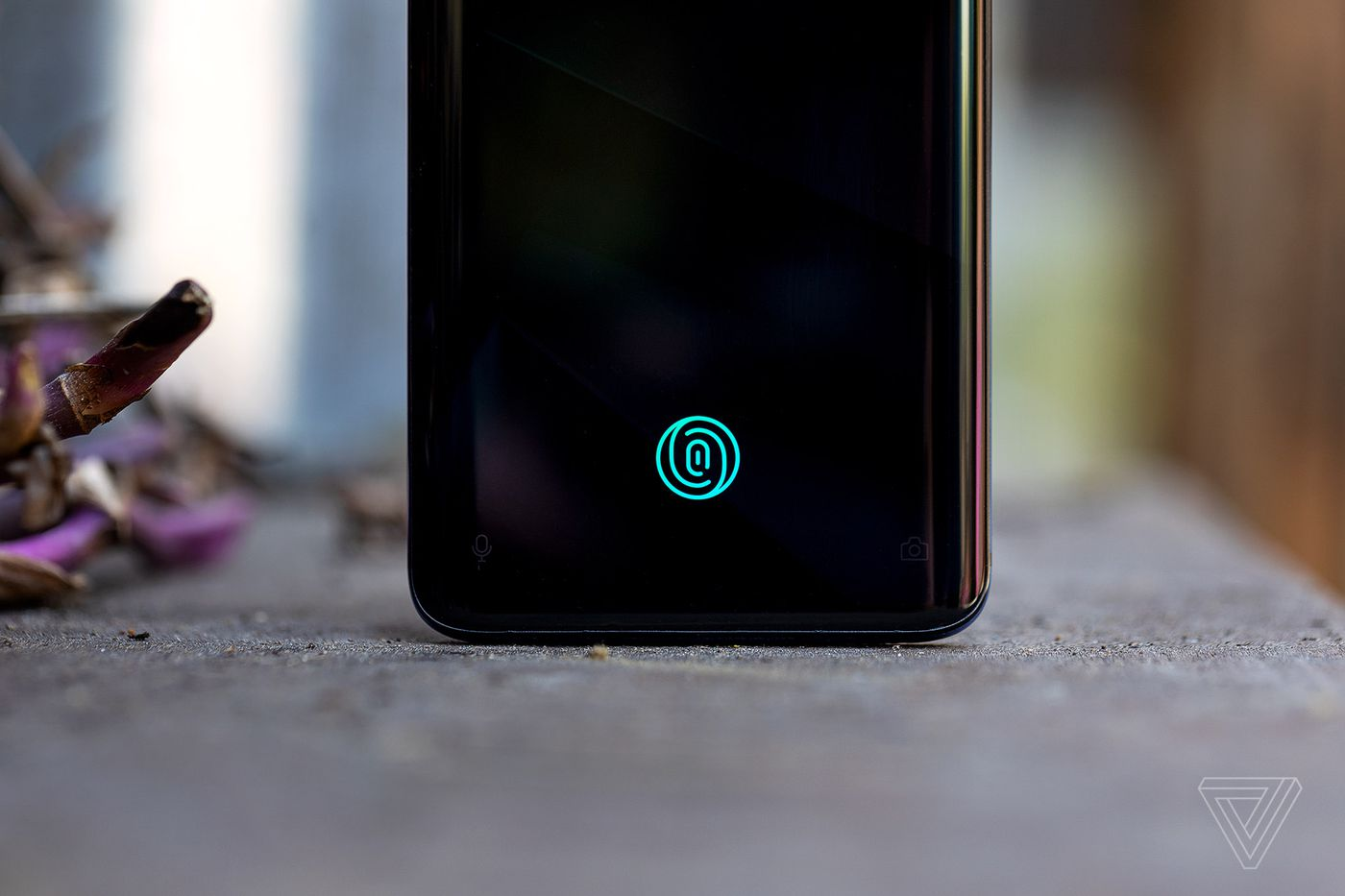 OnePlus 7 Pro review: an amazing screen meets a good enough camera