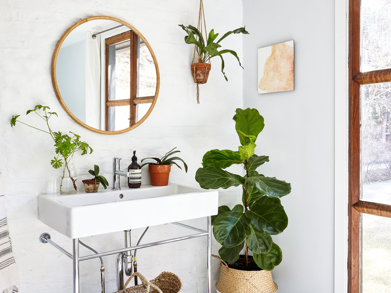 A bright bathroom with a round mirror. A large plant stands next to the sink. Three smaller plants sit on the sink. One more plant hangs on the wall.
