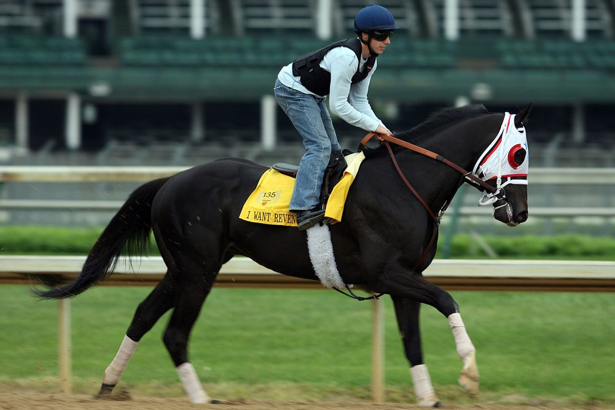LOUISVILLE, KY - APRIL 28: I Want Revenge runs on the track during the morning training for the 135th Kentucky Derby at Churchill Downs on April 28, 2009 in Louisville, Kentucky. (Photo by Andy Lyons/Getty Images)